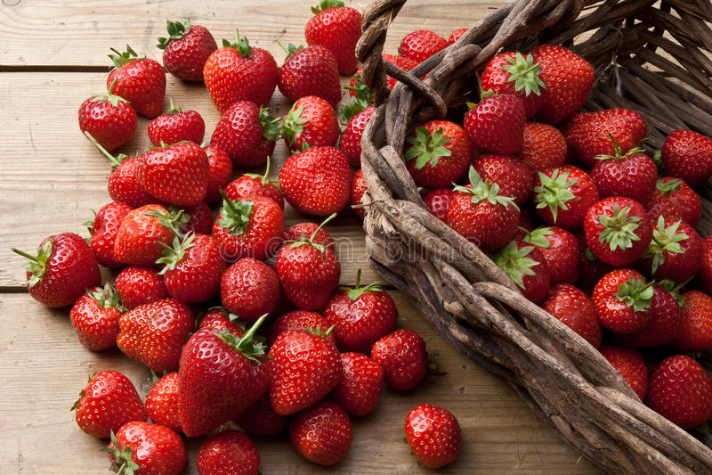 Nytt valda jordgubbar royaltyfria foton