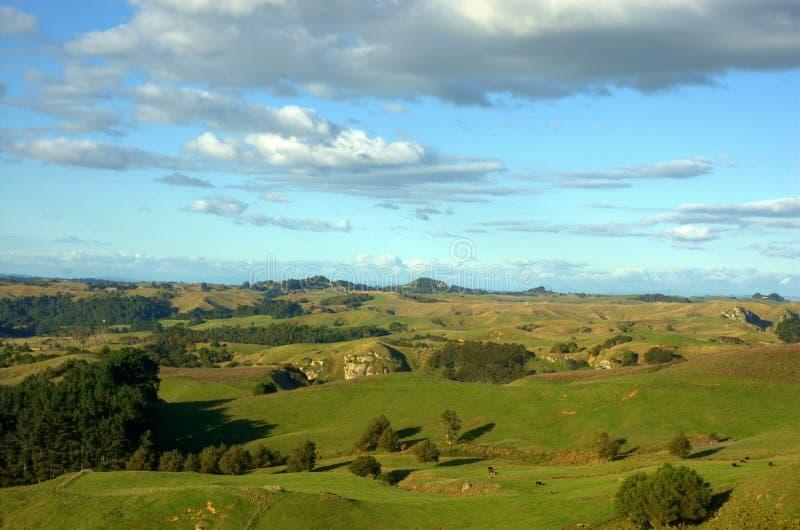 Download NZ landscapes stock image. Image of summer, wild, landscapes - 11631317