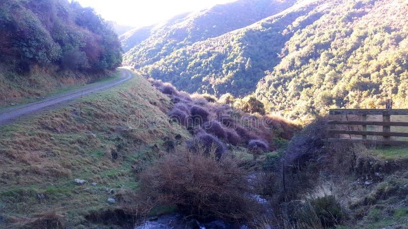 Nz-Landschaft stockfotos
