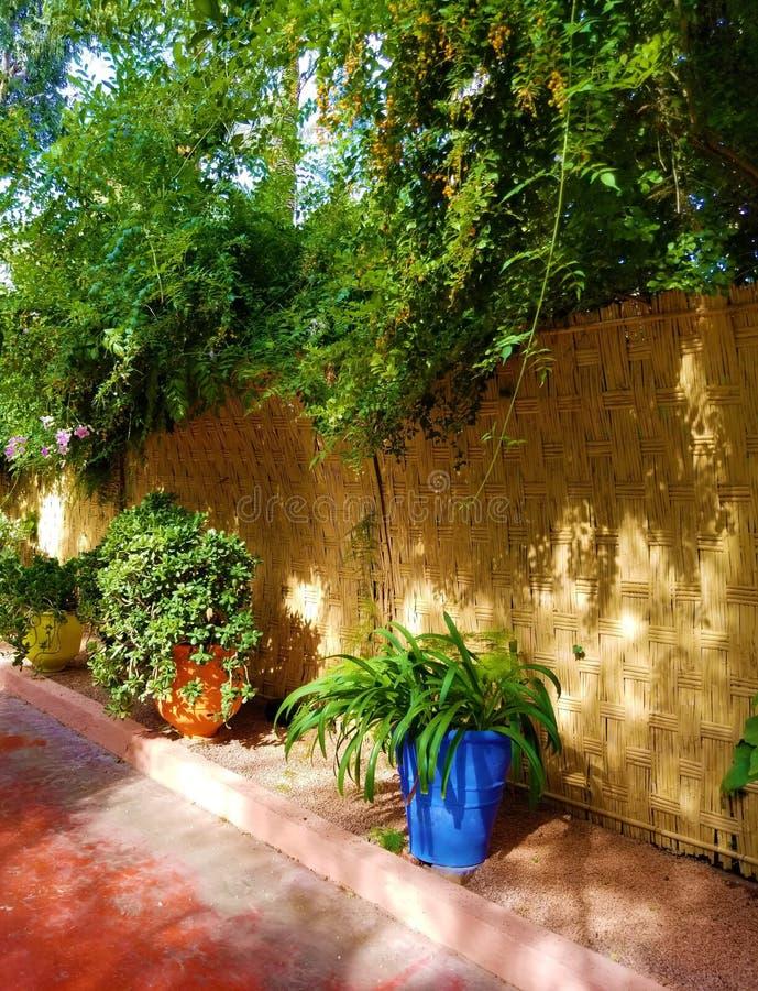 Oásis da arte e de ajardinar em jardins de Majorelle fotos de stock