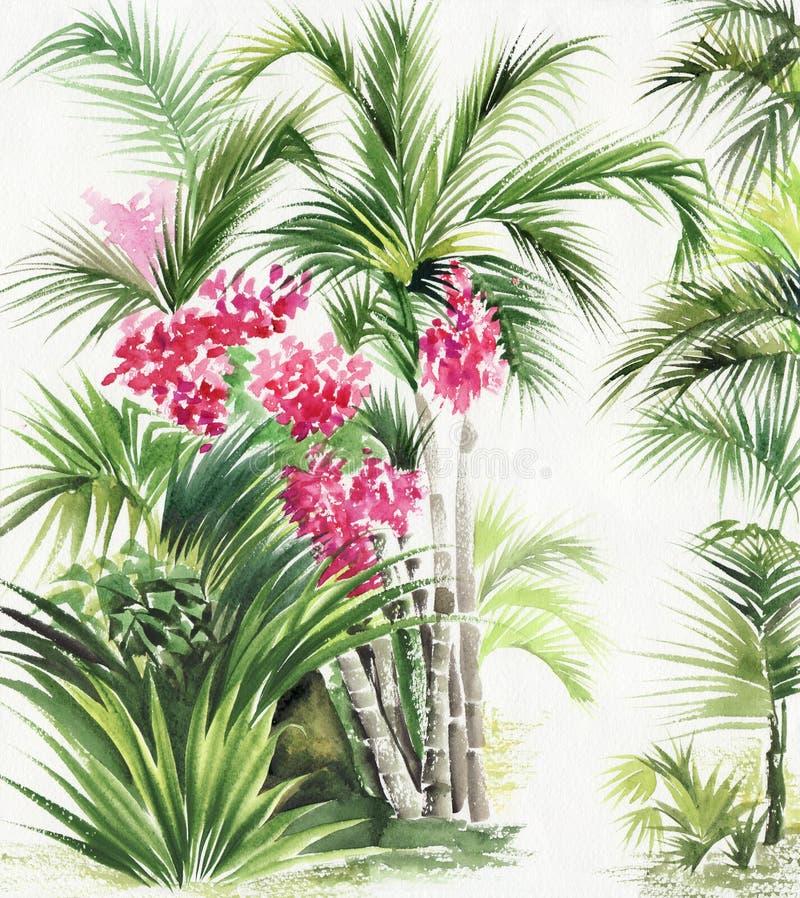 Oásis do bambu da palma ilustração royalty free