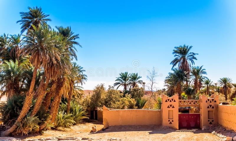 Oásis no deserto de Sahara de Marrocos fotografia de stock royalty free