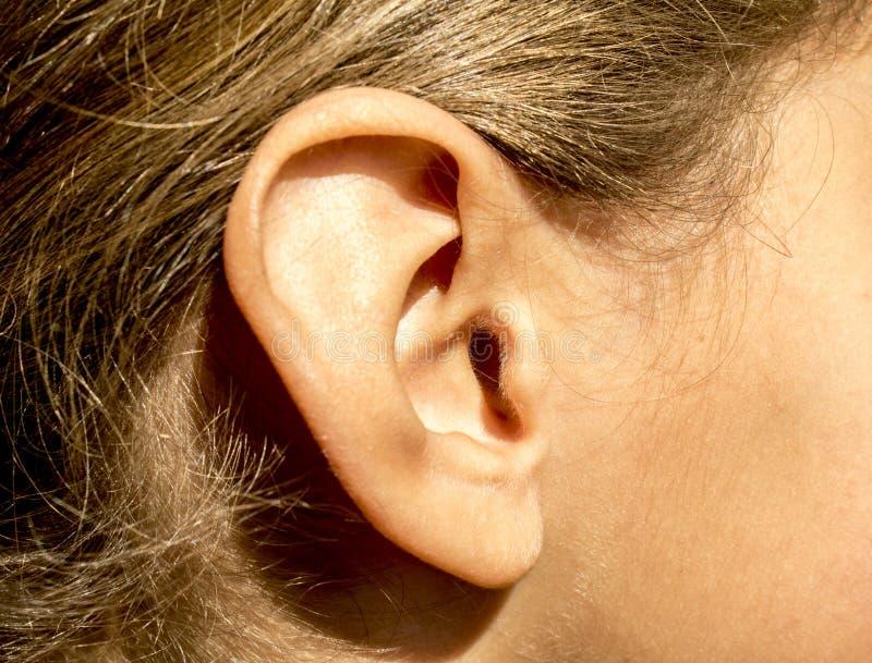Oído derecho de las chicas jóvenes con el pelo y el pelo del bebé en cara imagenes de archivo