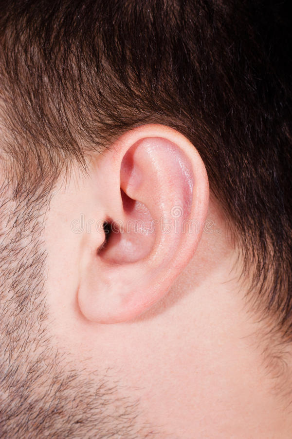 Oído masculino en cierre para arriba fotografía de archivo libre de regalías