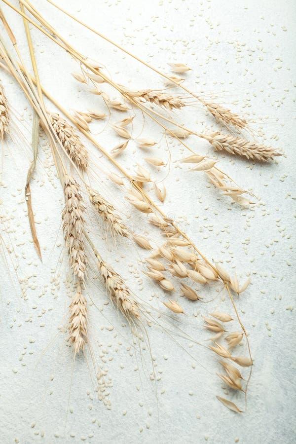 Oídos de oro del trigo y de la avena en una tabla blanca fotografía de archivo libre de regalías
