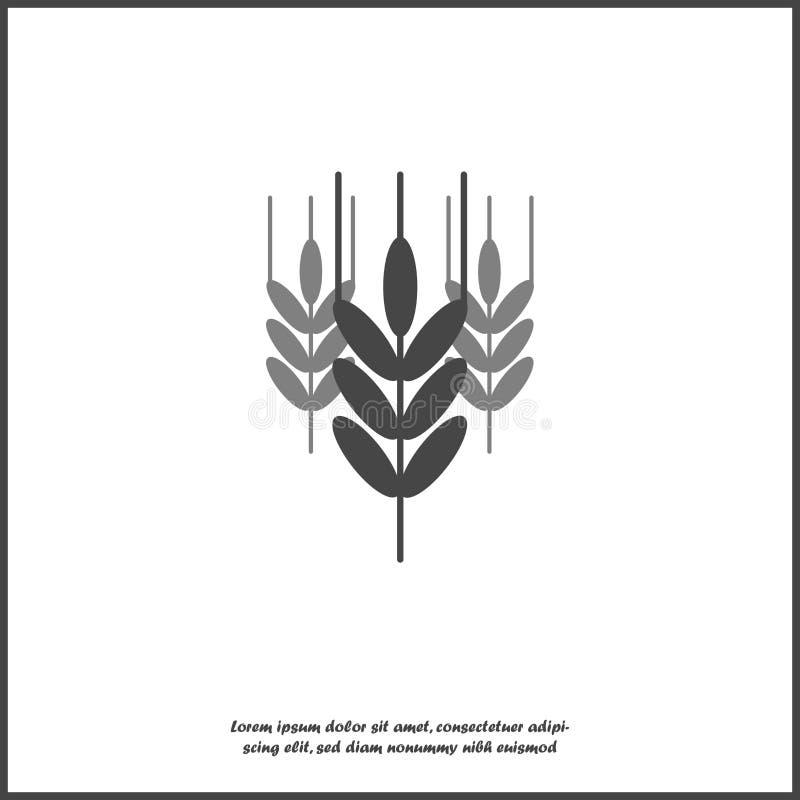 Oídos del icono del vector del trigo, cereal Oído de la avena Icono de los oídos de la ruda en el fondo aislado blanco Capas agru stock de ilustración