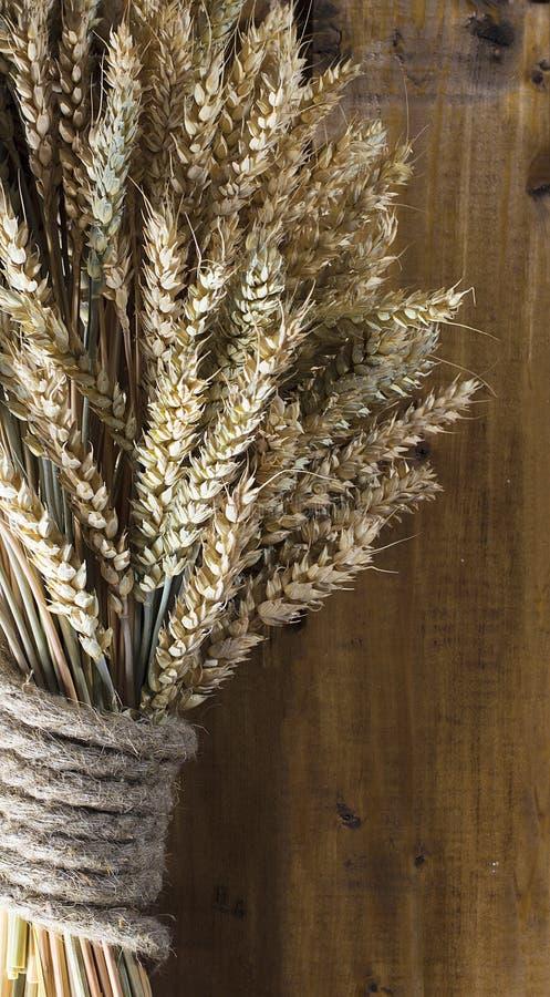 Oídos del trigo en el tablero de madera fotografía de archivo libre de regalías