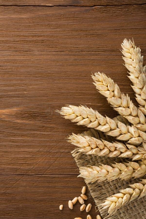 Oídos del trigo en la arpillera fotografía de archivo
