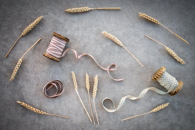 Oídos del trigo y bobinas de la cinta del vintage imagenes de archivo