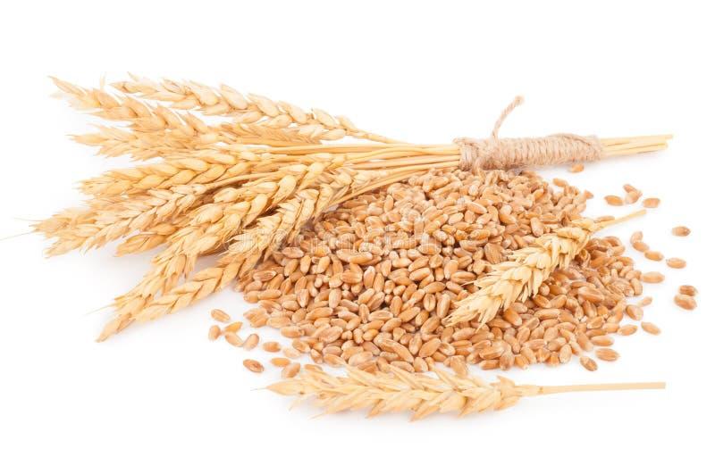 Oídos del trigo y de los granos del trigo imágenes de archivo libres de regalías