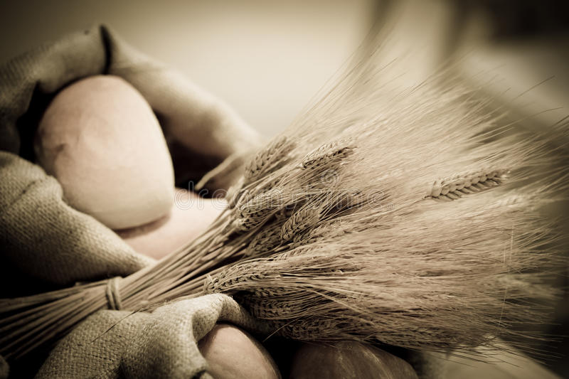 Oídos del trigo y del pan fotografía de archivo libre de regalías