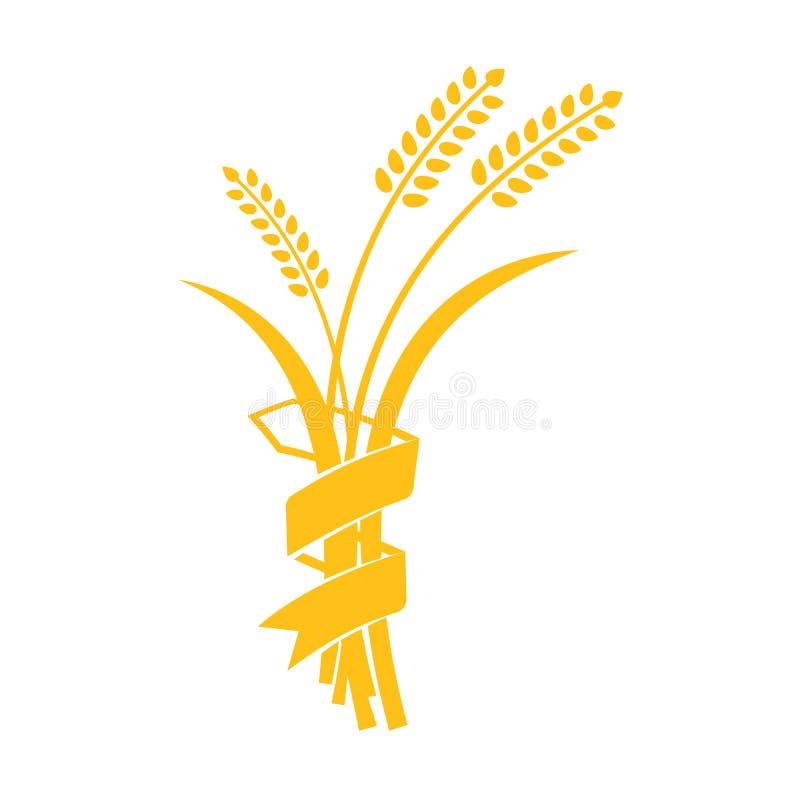 Oídos iconos gráficos visuales del vector del trigo, de la cebada o de Rye stock de ilustración