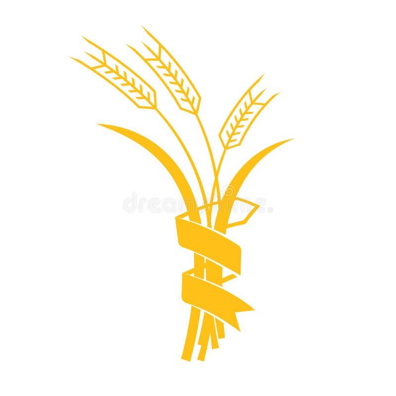Oídos iconos gráficos visuales del vector del trigo, de la cebada o de Rye ilustración del vector