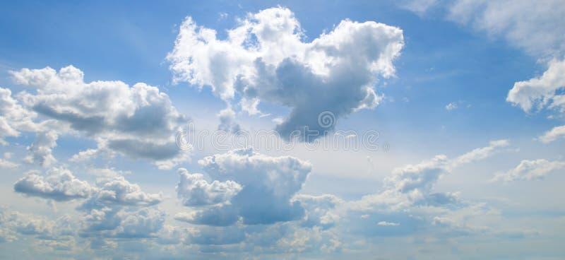 Облака кумулюса в голубом небе Широкое фото стоковая фотография rf