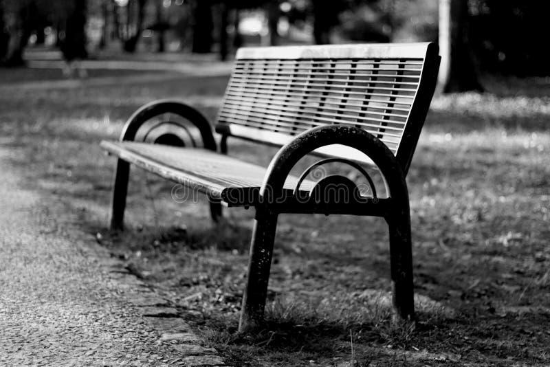 Общественный стенд в парке стоковое фото rf