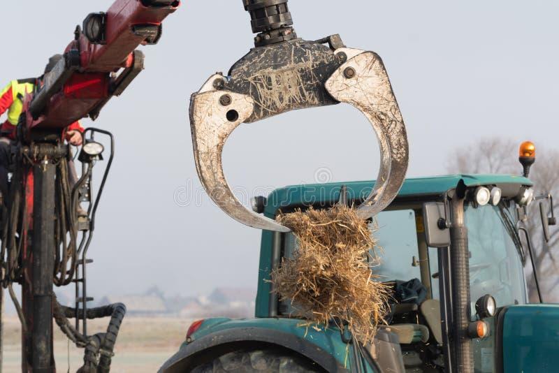 Оператор крана трактора лесохозяйства со сражается метать мульчирует солому на поле стоковые изображения rf
