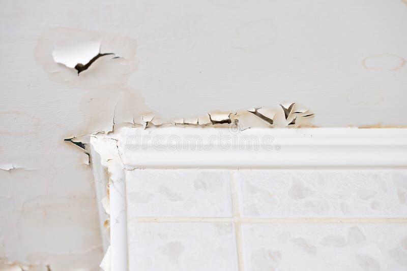 Опухающ протекать побелки и гипсолита на потолке жилища должном к прониканию воды от последнего этажа стоковые изображения rf