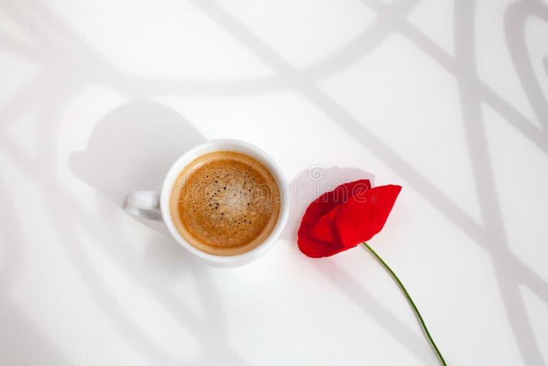 Один красный цветок мака на белой предпосылке таблицы со светом солнца и тени близкие вверх по взгляду сверху в солнечном свете у стоковое фото