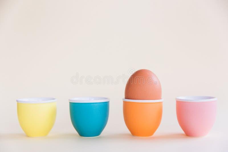 Одно положение коричневого яйца на чашке яйца на пастельной предпосылке, космосе экземпляра Концепция пасхи минимальная стоковое фото