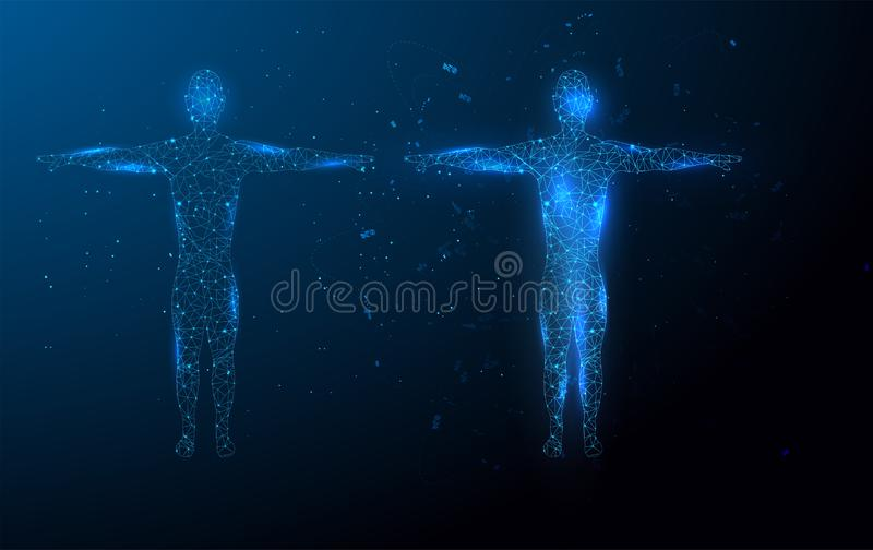 Low poly wireframe Human Body. Abstract Illustration form lines, triangles and particle style design. Illustration vector. Low poly wireframe Human Body stock illustration