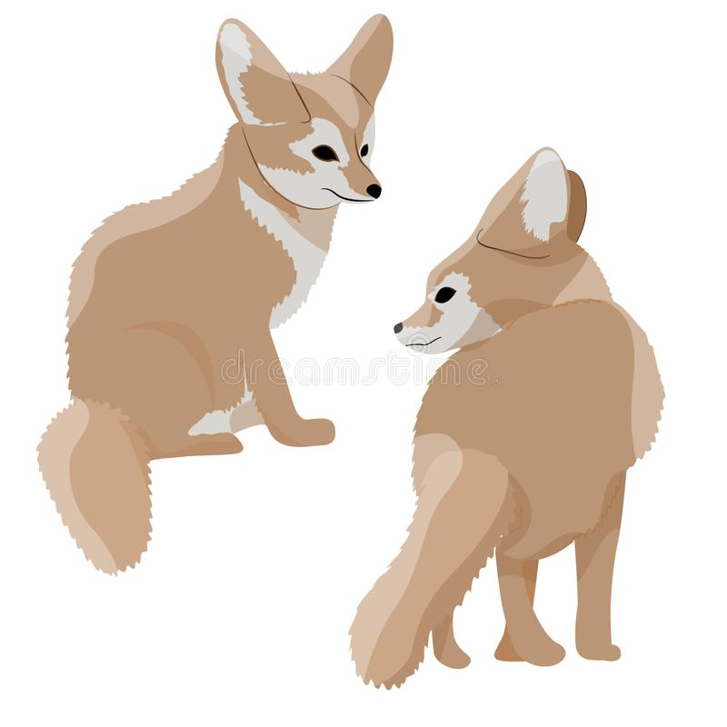 Collection of desert fox fennec. Wildlife of North Africa. Desert Sahara. Realistic Vector Animals royalty free illustration