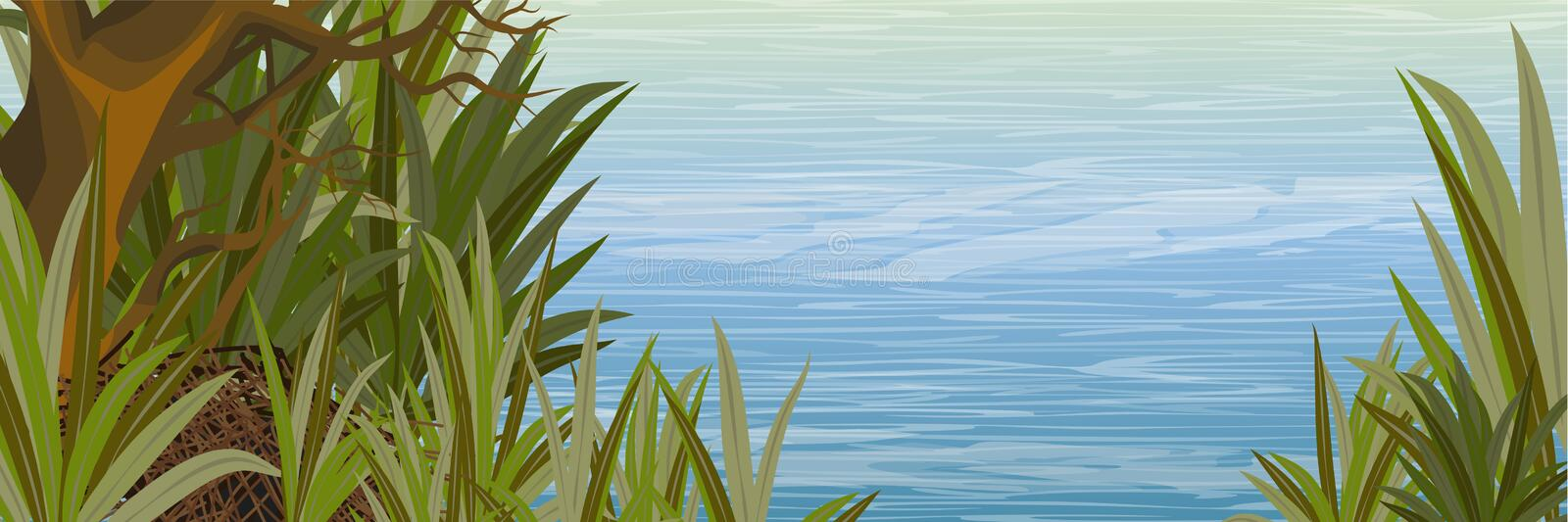 The shore of the pond with a branchy tree and tall grass stock illustration