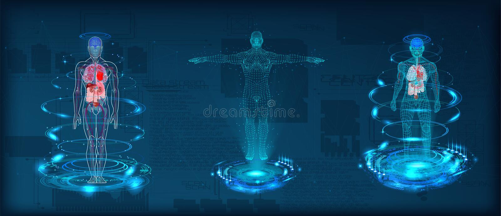 Human body low poly wireframe. Futuristic scan set, human hologram, body x-ray, 3d model in HUD style. Polygonal wireframe mesh with scattered particles and stock illustration