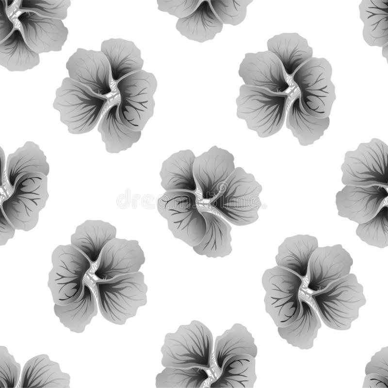 Seamless wild floral pattern with nasturtium. Gray hibiscus flowers on white background. Botanical Motifs scattered random. stock illustration