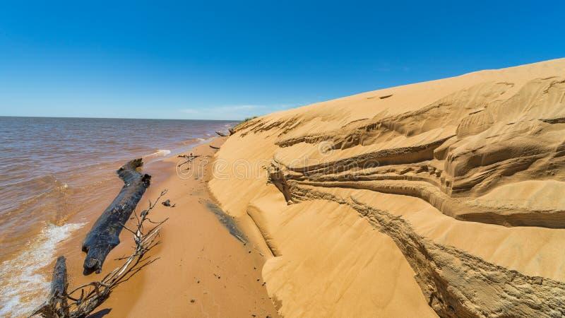 """Остров """"Las Dunas de Сан Cosme y Damian """"дюн в середине Рио Parana около города Encarnacion стоковая фотография"""