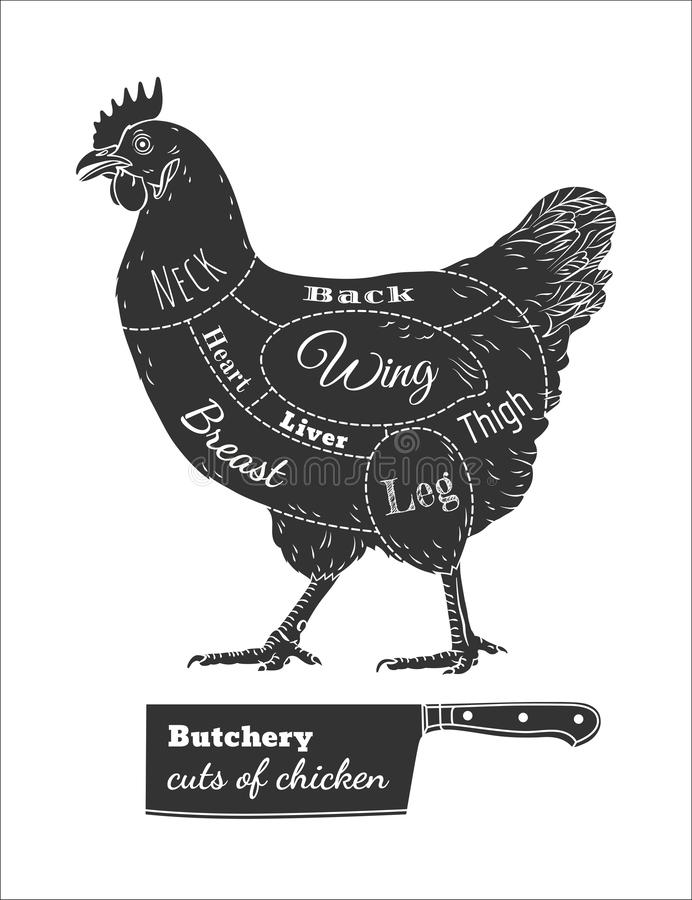 Отрезки палачества цыпленка черно-белые бесплатная иллюстрация