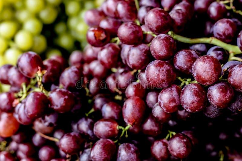 органические свежие пурпурные виноградины стоковые фото