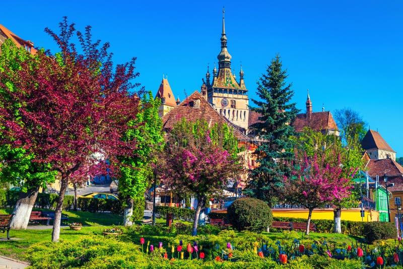 Орнаментальный парк с красочными цветками в центре города, Sighisoara, Румынии стоковое изображение