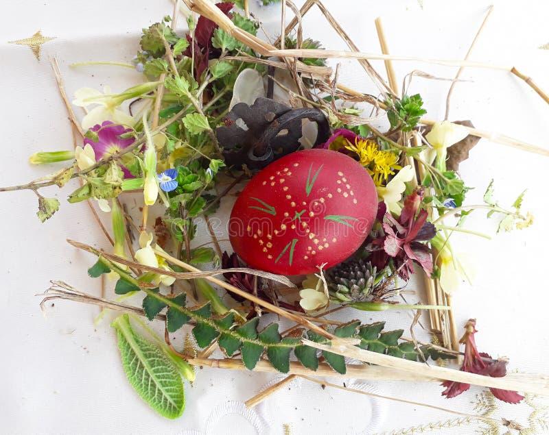 Орнаментированное красное пасхальное яйцо со свежими полевыми цветками и травами стоковое фото