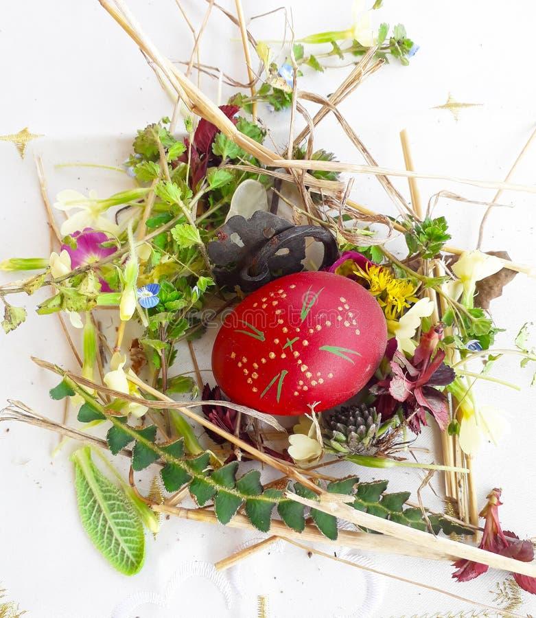 Орнаментированное красное пасхальное яйцо со свежими полевыми цветками и травами стоковое изображение rf