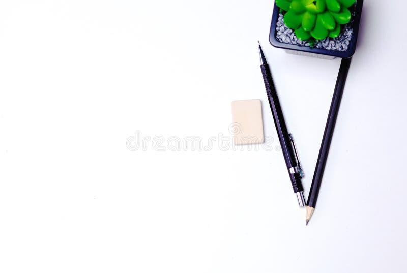 Ołówki i kaktusowy kłamstwo na desktop zdjęcia stock