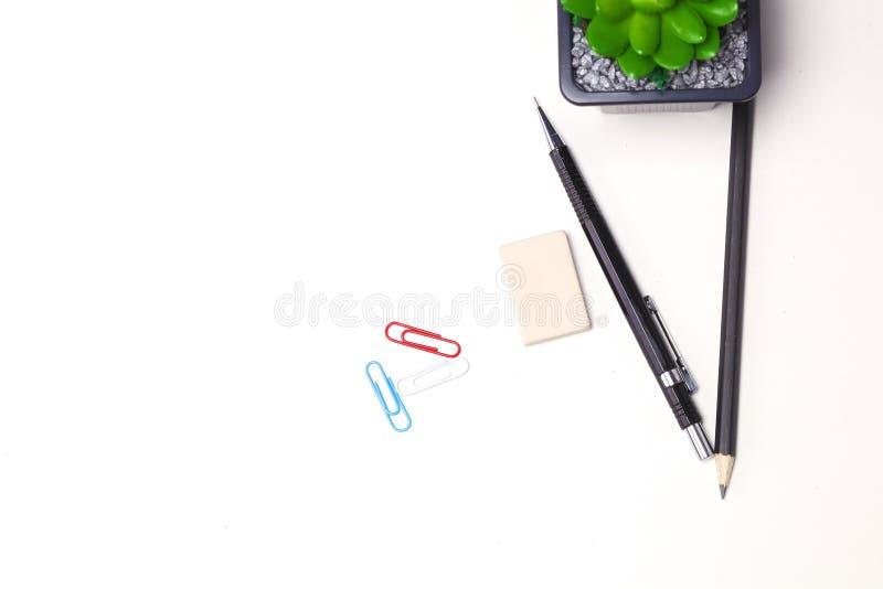 Ołówki i kaktusowy kłamstwo na desktop obraz royalty free