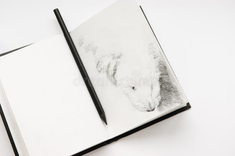 ołówkowy sketchbook obrazy stock
