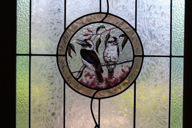 Ołowiany Lekki Kookaburras Australia zdjęcie stock