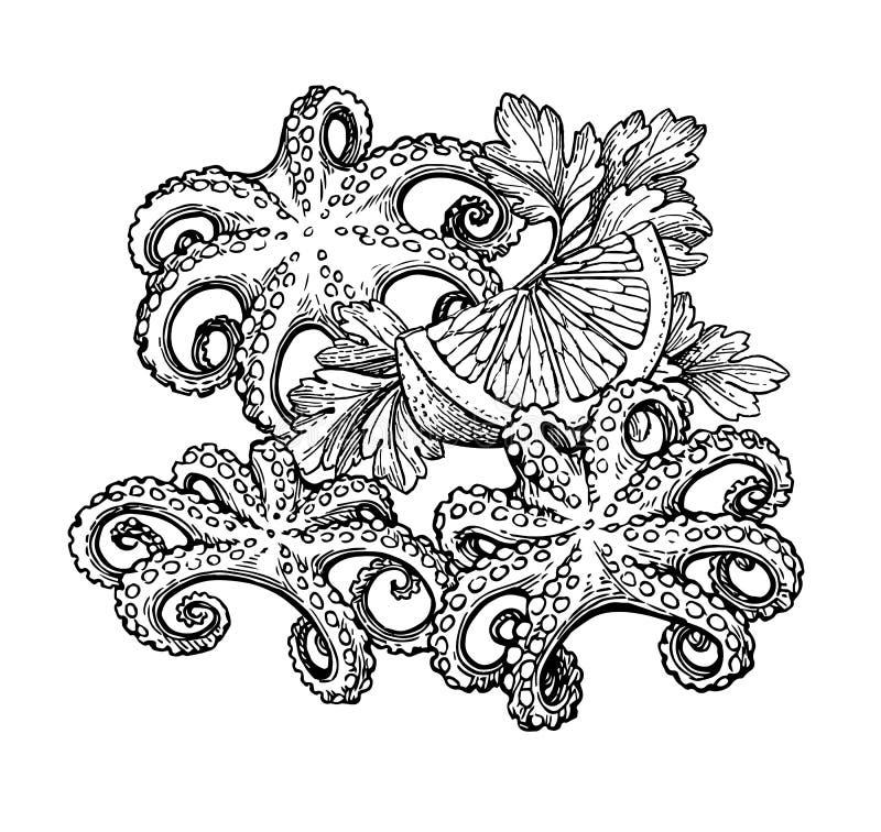 Ośmiornica atramentu nakreślenie ilustracja wektor