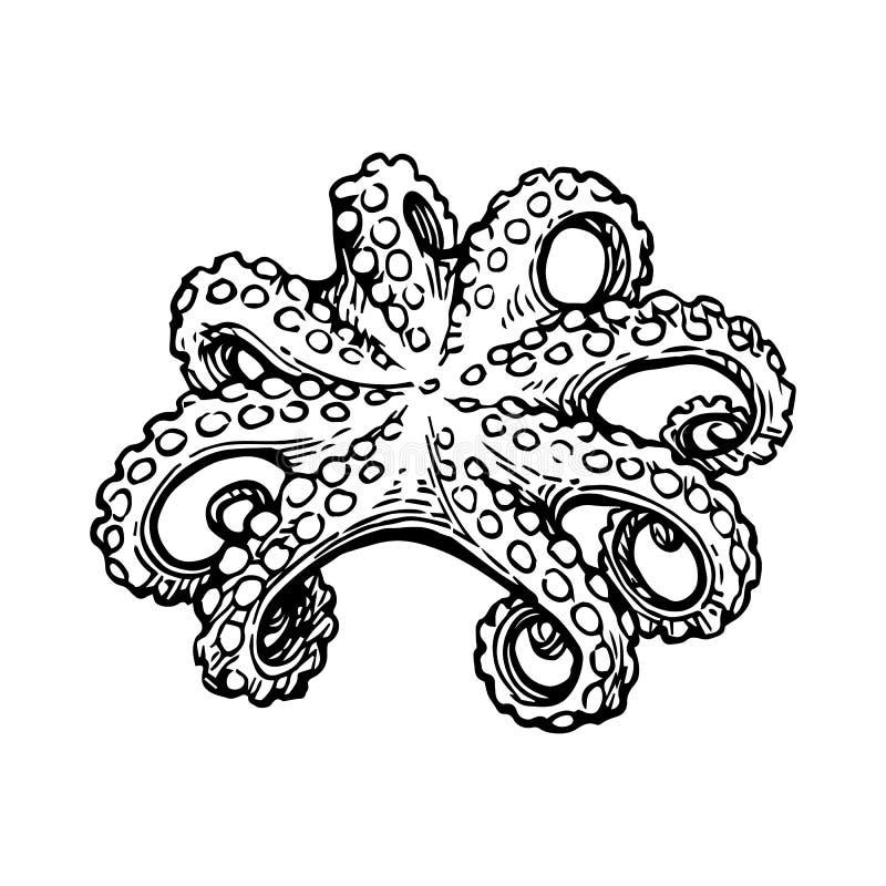 Ośmiornica atramentu nakreślenie royalty ilustracja