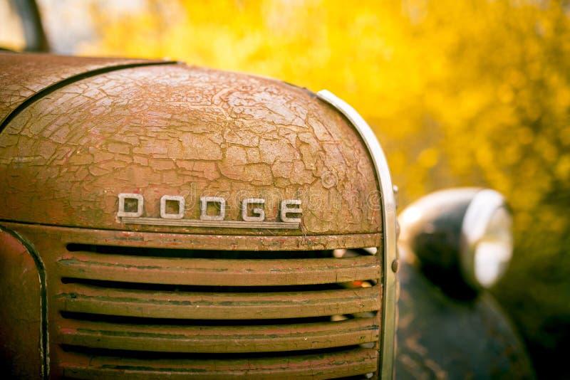 Ośniedziała Stara Dodge furgonetka zdjęcie royalty free