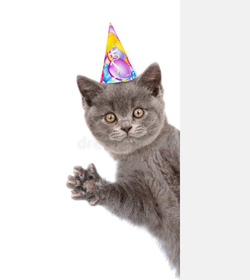 O ¡ de Ð no chapéu do aniversário espreita para fora atrás de uma bandeira e de acenar sua pata fotografia de stock royalty free