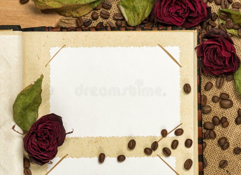 O álbum de fotografias e seca rosas vermelhas em sementes do café imagem de stock