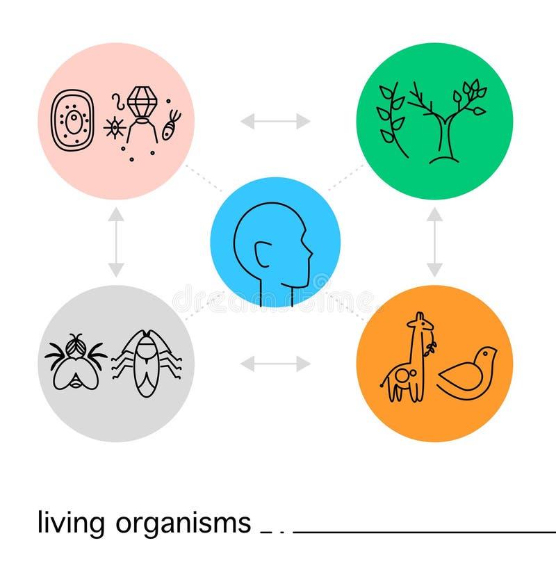 O ícone da biologia do vetor ajustou-se no fundo branco com círculos coloridos ilustração royalty free
