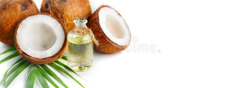 O óleo de coco em uma garrafa com cocos e a palmeira verde folheiam em um fundo branco Skincare imagem de stock