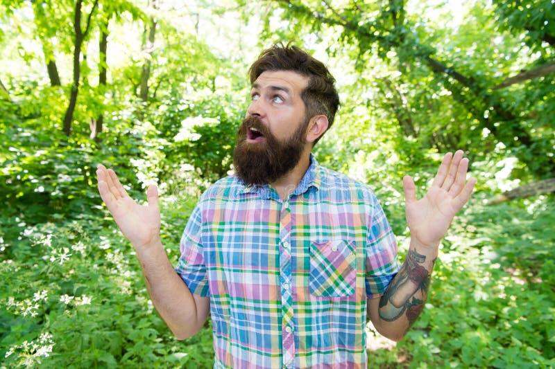 o Исследуйте дикую деятельность при природы Эмоциональный любитель природы Борода и усик человека красивая летом стоковое изображение