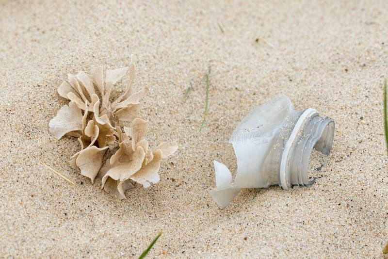 o Природа и искусственная погань бутылки совместно на пляже стоковые изображения
