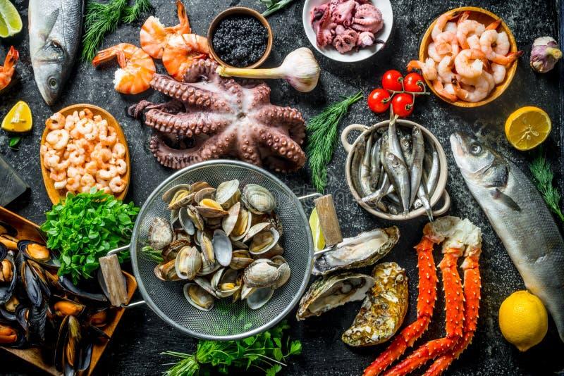 o Разнообразие свежие морепродукты стоковое фото