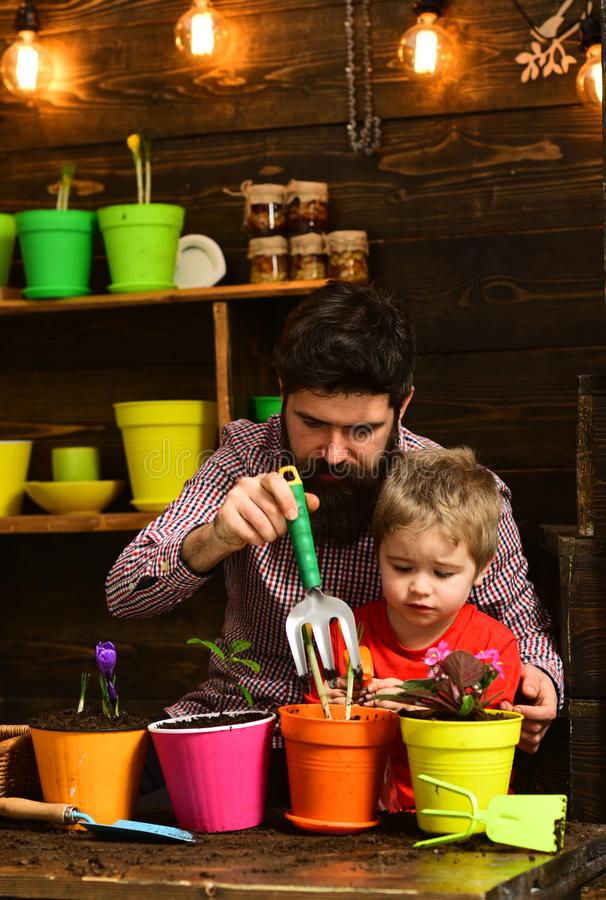 o ?? 有胡子的人和小男孩儿童爱自然 r r 愉快的花匠与 库存图片