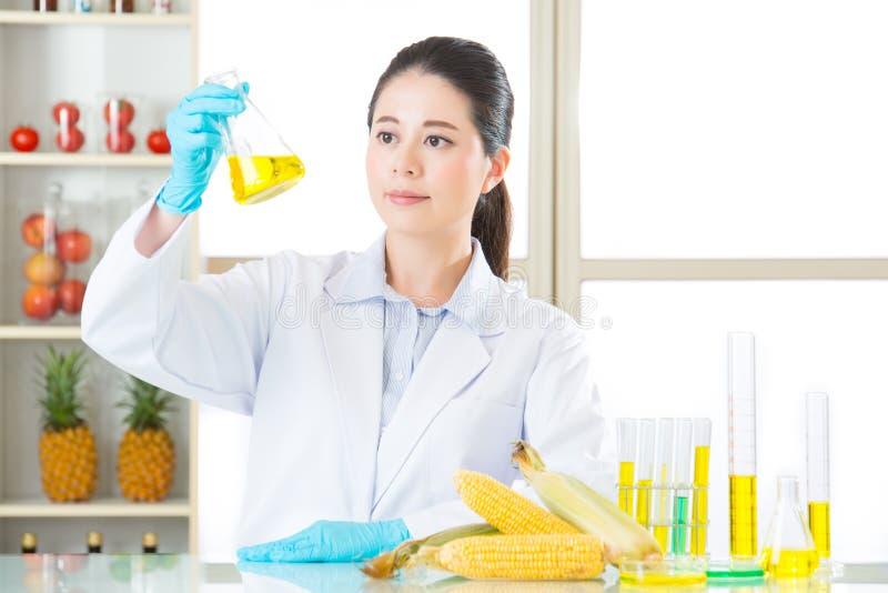 O açúcar de milho não é o que você pensa do cana-de-açúcar fotografia de stock